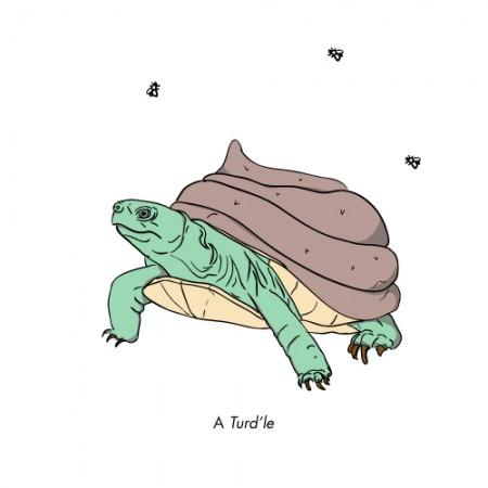 A Turdle
